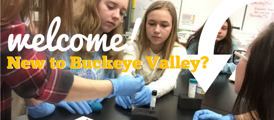 "<a href=""http://www.buckeyevalley.k12.oh.us/Content2/62"">CLICK HERE for enrollment information</a>"